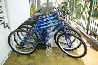 A row of blue bicycles